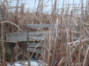 What's this? Hunters have built a duck blind.